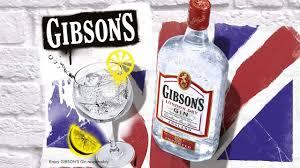 gin gibson - 1l - auchan