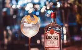 gin gibson - composition - fizz