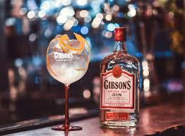 gin gibson - composition - fizz