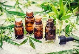 Organic Line CBD Oil – Amazon – effets secondaires – comprimés