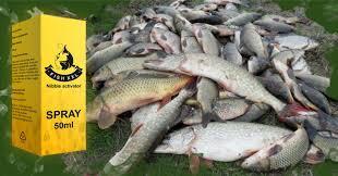 Fish XXL - effets - en pharmacie - comment utiliser